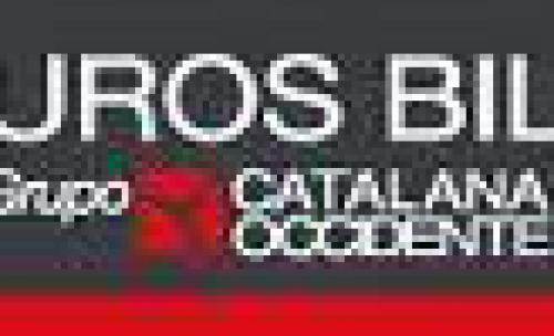 Seguro de coches en asturias for Oficinas mapfre bilbao